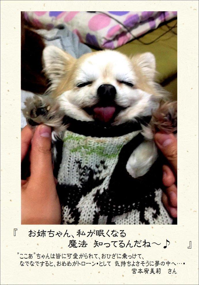 金賞_01