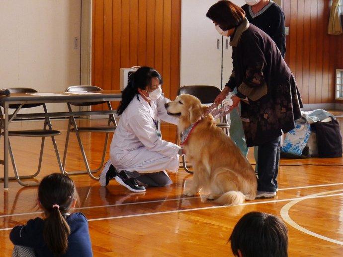 動物愛護教室